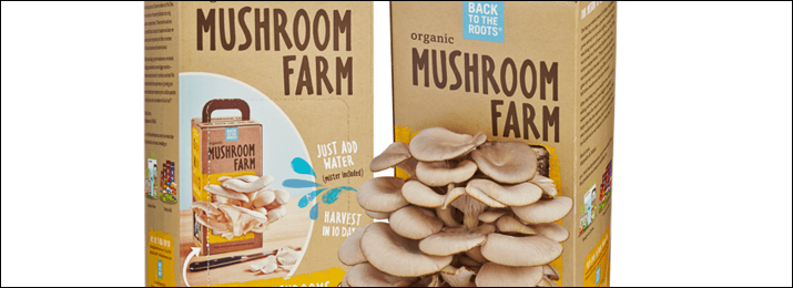 Mushroom growing kits | Basebuildguys com